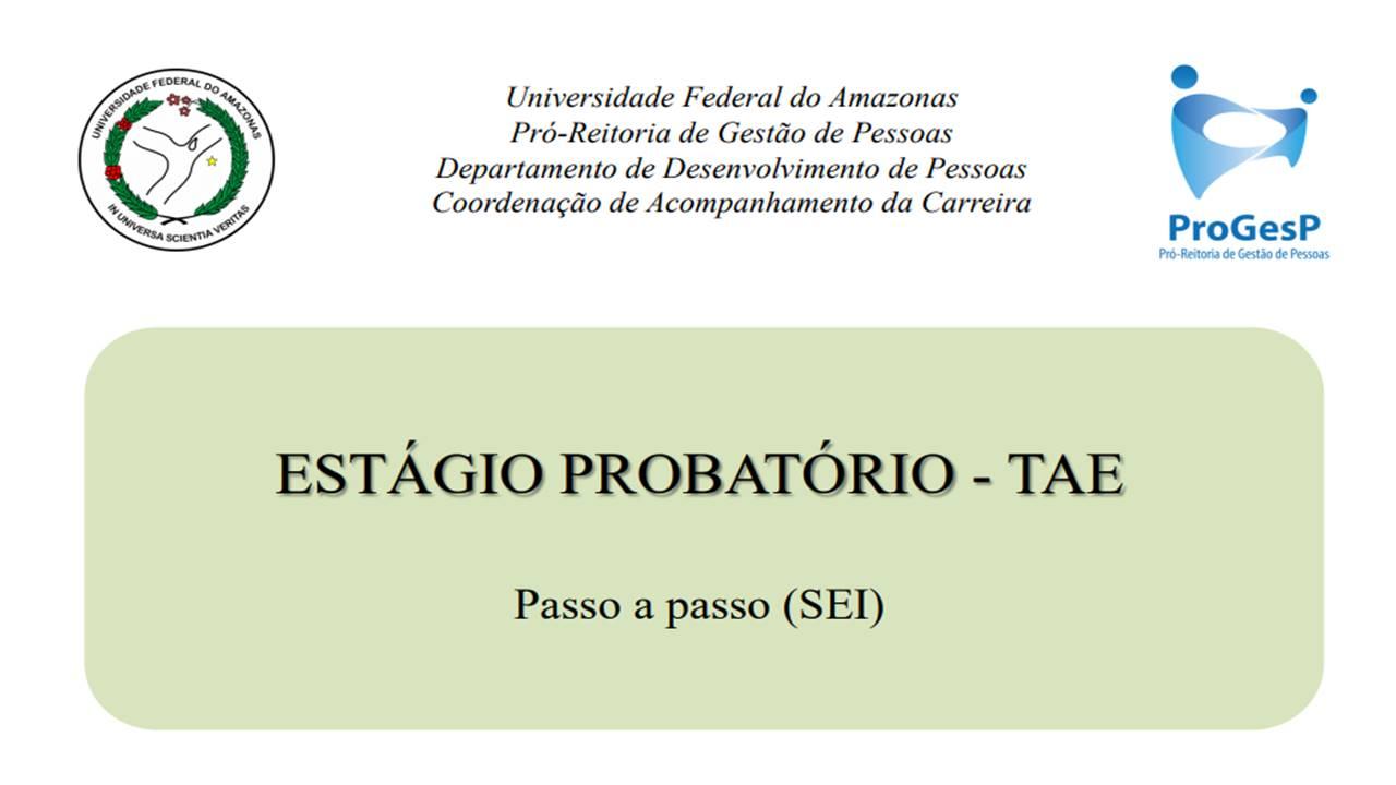 Progesp disponibiliza tutorial com passo a passo para realizar avaliação de estágio probatório pelo SEI